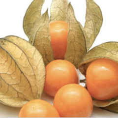 Вчені назвали найпотужнішу ягоду для профілактики раку