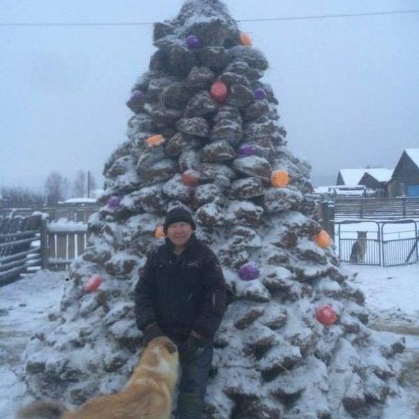 У Росії чоловік зробив новорічну ялинку із гною (фото)