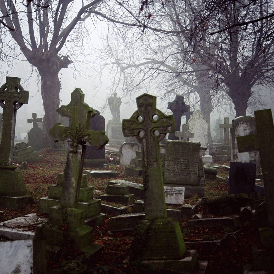 На Запоріжжі ветеранам АТО замість сільськогосподарської землі дали ділянки на цвинтарі