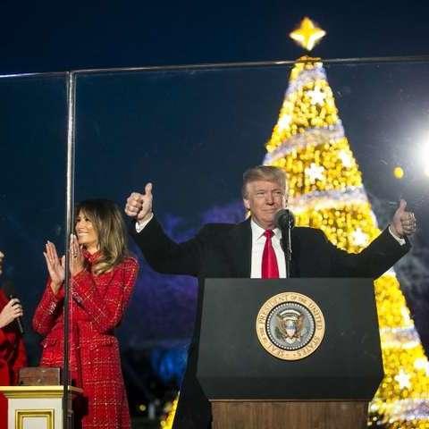 Трамп вперше запалив вогні на головній різдвяній ялинці біля Білого дому (відео)