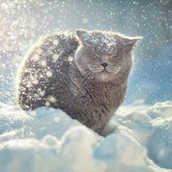 Прогноз погоди на 4 грудня: захід замете снігом, а подекуди буде «весна»