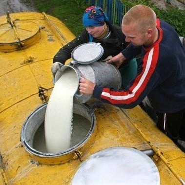 В Україні заборонять молоко другого сорту: підприємці не купуватимуть молоко у селян
