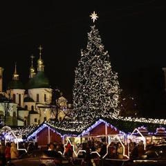 Головну ялинку країни везуть в Київ