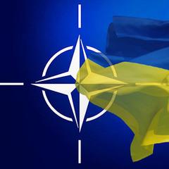 У НАТО розповіли, як ставляться до вступу України в Альянс