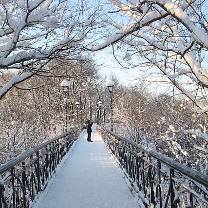 У Києві впродовж найближчих двох днів очікується мокрий сніг, на дорогах ожеледиця