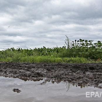 Аграрний комітет Верховної Ради підтримав мораторій на продаж землі до 2019 року