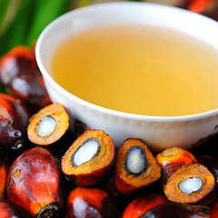 БПП, радикали та Опоблок заявили про готовність заборонити пальмову олію