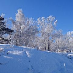 Синоптик розповіла, коли в Україну прийдуть морози
