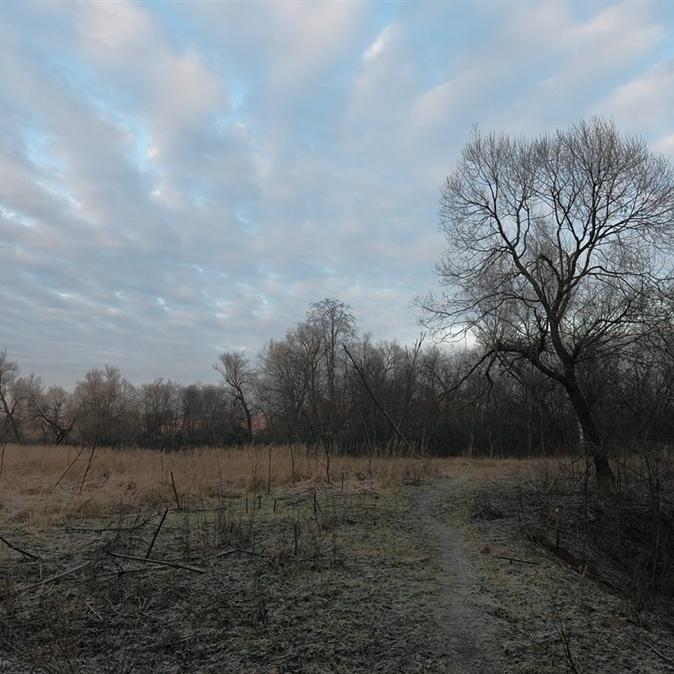 В Україні сьогодні практично без опадів, на півдні до +13° (карта)