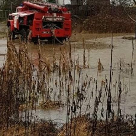 Майже тисячу будинків підтоплено внаслідок паводку на Закарпатті