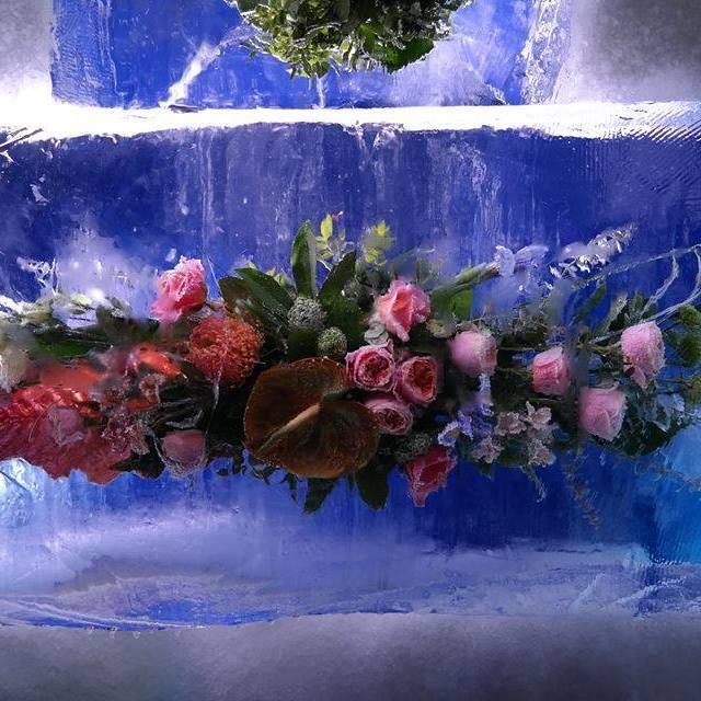Завтра на Співочому полі відкриється фестиваль «Льодовиковий період»