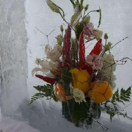 У центрі Києва відкрили чарівний фестиваль квітів