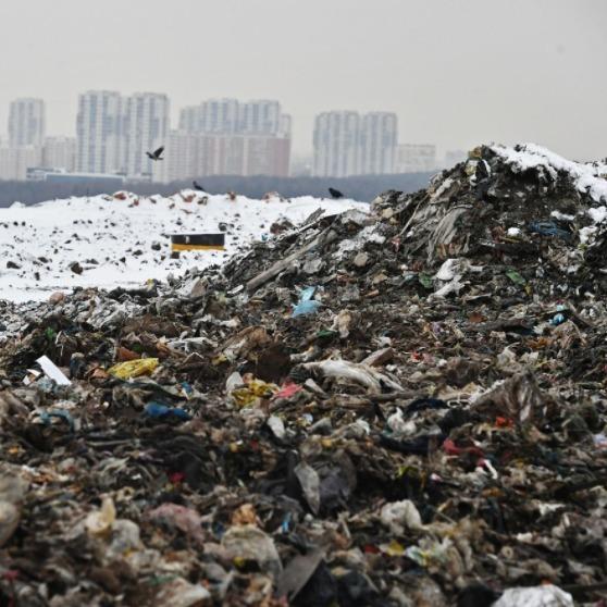 В Росії на сміттєзвалищі розпилюють парфуми перед приїздом президента