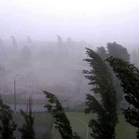 Через шквальний вітер у Франції оголошено помаранчевий метеорологічний рівень небезпеки