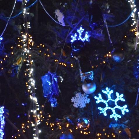 У Запоріжжі пройшов новорічний флешмоб (відео)