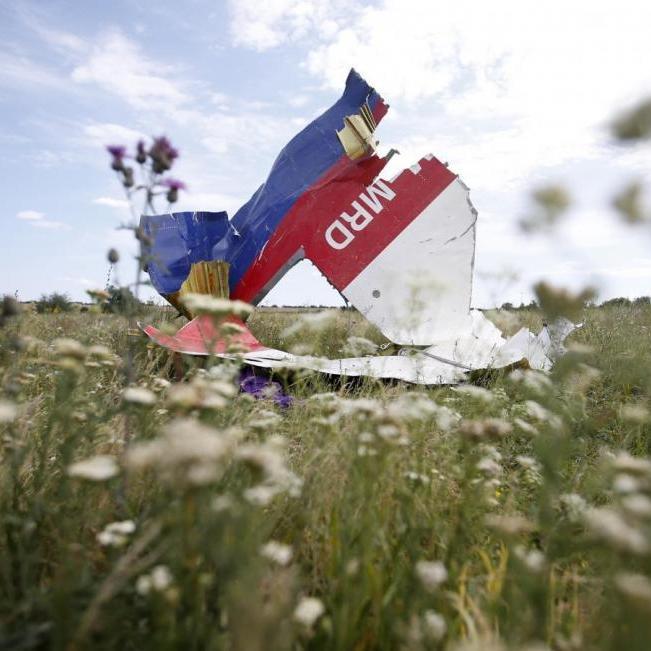 Нідерланди сьогодні оприлюднять імена причетних до катастрофи MH17 над Донбасом