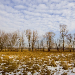 Минулий грудень у Києві став одним із найтепліших за останні 136 років