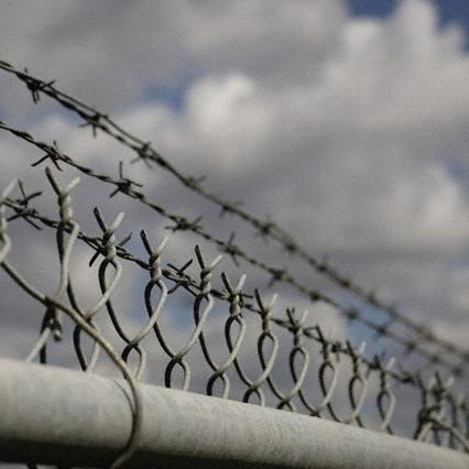 У Чехії третина амністованих у 2013 році злочинців знову за ґратами