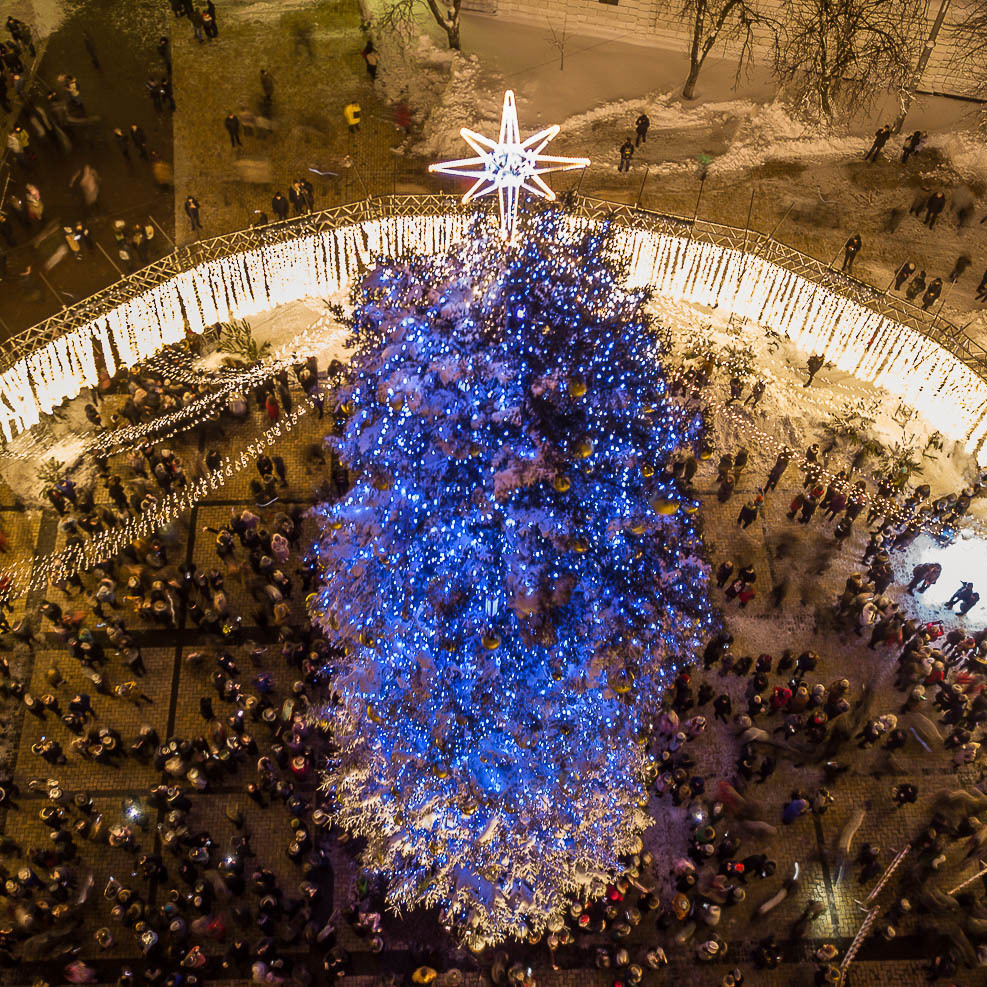 У Києві головну ялинку поріжуть на сувеніри, меблі та тирсу
