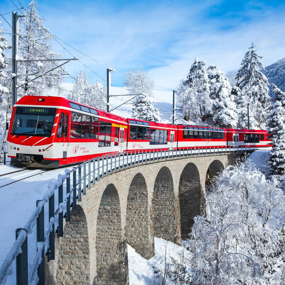 У Швейцарії ураган зірвав із рейок пасажирський поїзд: восьмеро постраждали (відео)