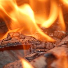 В Україні упродовж 1-7 січня у пожежах загинули 58 осіб