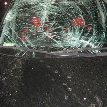 Моторошна ДТП на Львівщині: водій збив подружжя, жінка загинула на місці (фото)