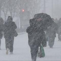 Пік хуртовин у Києві очікується 18 січня