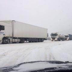 Снігопад в Україні: в деяких областях обмежать рух вантажівок