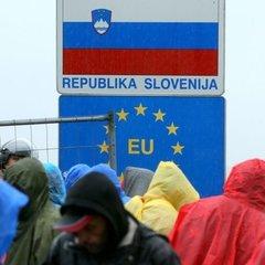 У Словенії спіймали українця, який перевозив 20 нелегалів із Пакистану (відео)