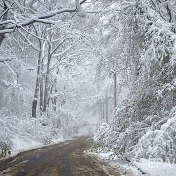 Хуртовини та снігові замети: ДСНС попередила про негоду в Україні 21–23 січня
