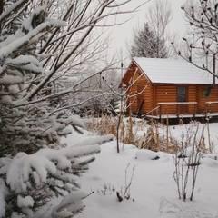 Сьогодні в Україні продовжаться снігопади, на півночі та в центрі до -12° (карта)