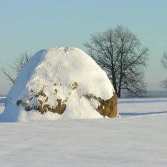 На Харківщині мати залишила немовля замерзати у копиці сіна