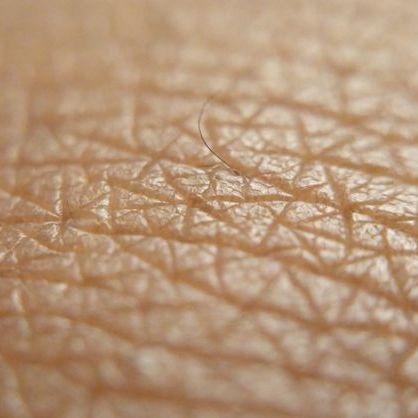 У Сінгапурі надрукували на 3D-принтері новий тип штучної людської шкіри