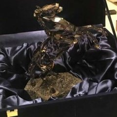 В квартирі Клименка вилучили колекцію «скарбів» (фото)