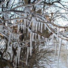 Морози відступають: прогноз погоди на понеділок, 29 січня