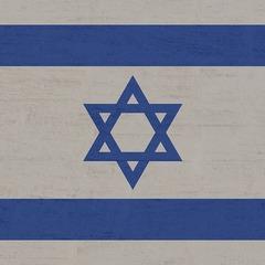 МЗС Ізраїлю викликало заступника польського посла в Тель-Авіві через поправку до закону