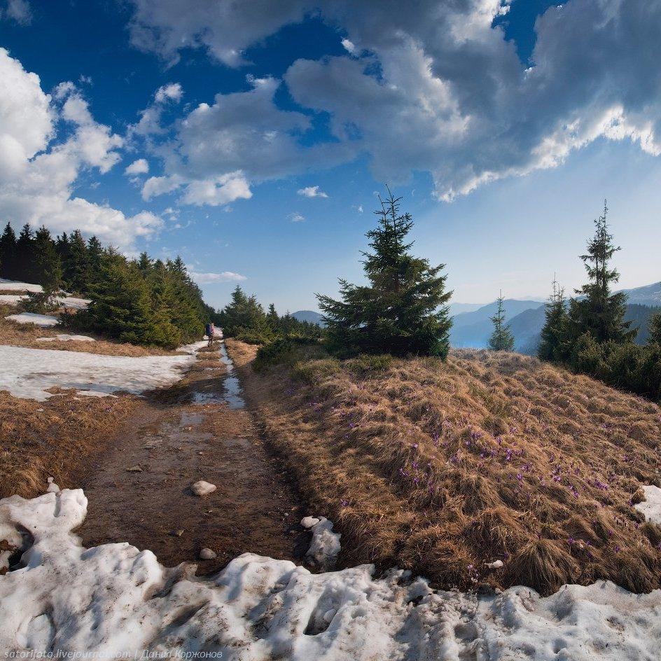 Погода: в Україні дощі з мокрим снігом, температура до +10 в Одесі