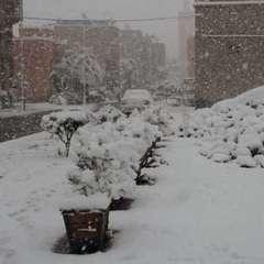 Сніг засипав Марокко вперше за 50 років