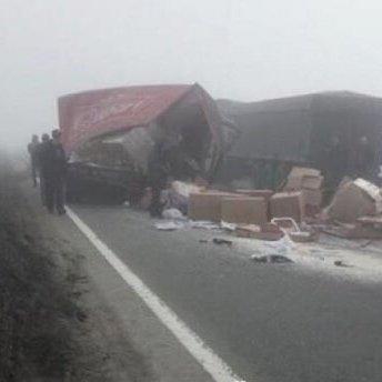 Моторошна ДТП на трасі Київ – Одеса: вантажівка переїхала чоловіка (фото)