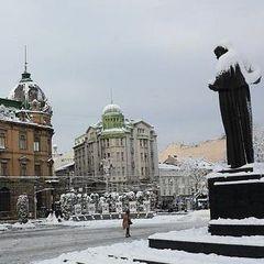 У Львові за добу випало 64% місячної норми опадів
