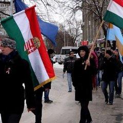 Ситуація з угорцями на Закарпатті зацікавила комісара ОБСЄ