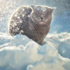 Уночі на українців чекають люті морози