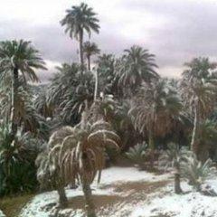 Сахару знову засипало снігом (фото)