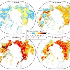 Учені б'ють на сполох через ртуть, яка може вивільнитися внаслідок глобального потепління