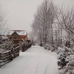 Сьогодні практично по всій Україні пройдуть снігопади та дощі (карта)