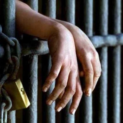 За жорстоке поводження із домашніми тваринами дадуть від 2 до 3 років в'язниці