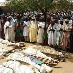 В Нігерії 36 людей вбили через стадо овець