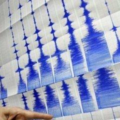 Потужний землетрус у Мексиці: кількість повторних поштовхів сягнула понад 120