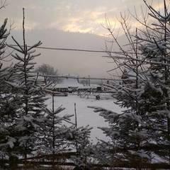 В Україні сьогодні очікуються морози, на заході пройде сніг (карта)