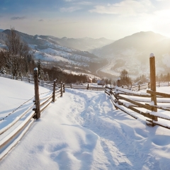 Снігопади і нижче 20 градусів морозу: синоптик розповіла, коли Україну накриє похолодання